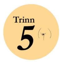 trinn5